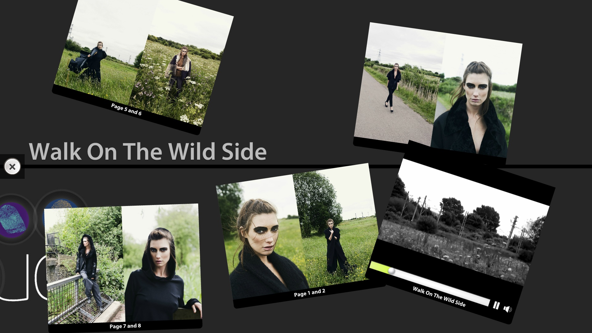 fashion app walk on the wild side